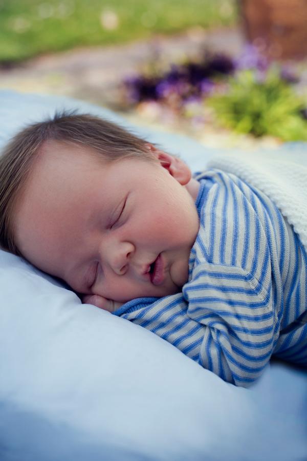 nyfødt portrætter
